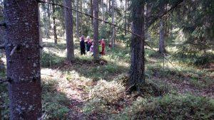 Scouter i skogen